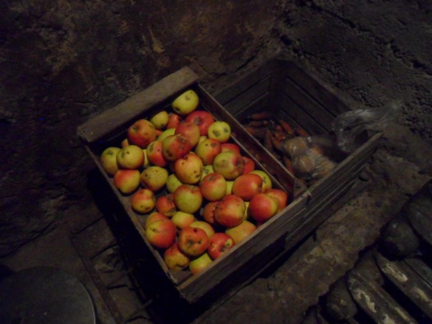 Cellar (around 4°C even in summer)
