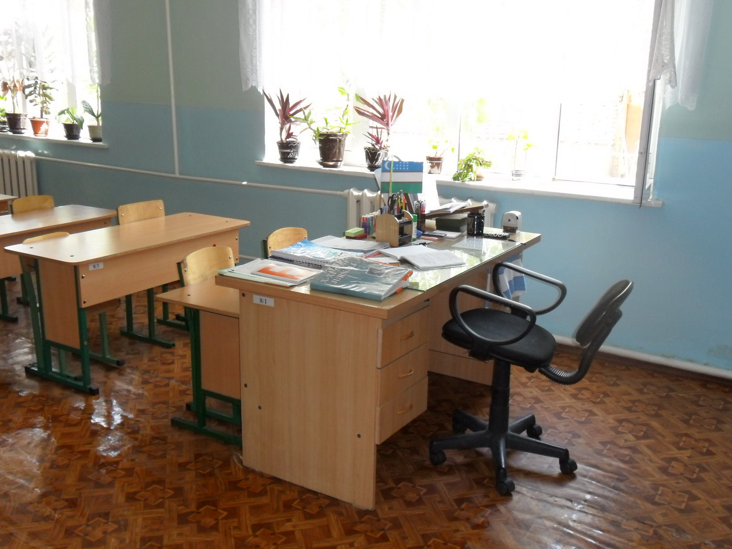 Classroom with indoor plants